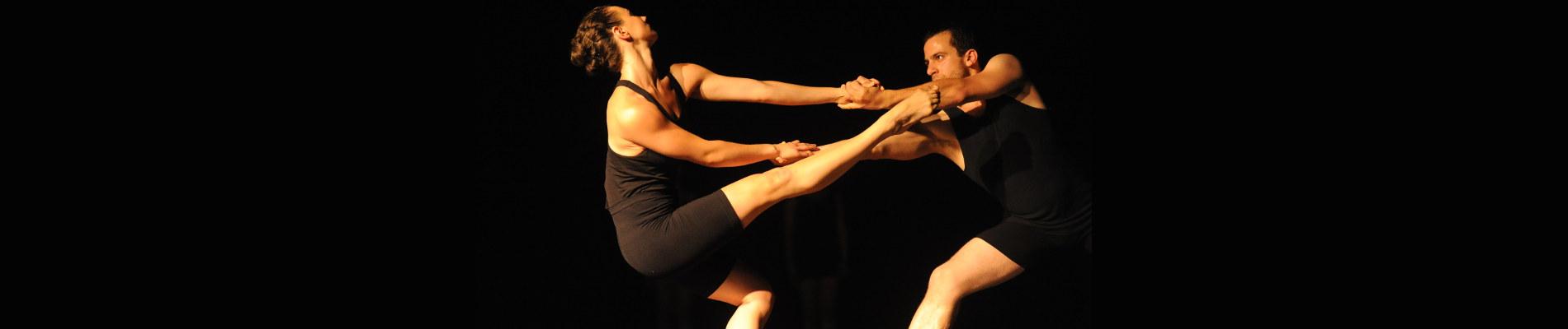 أنسمبل راقصي الأكاديمية