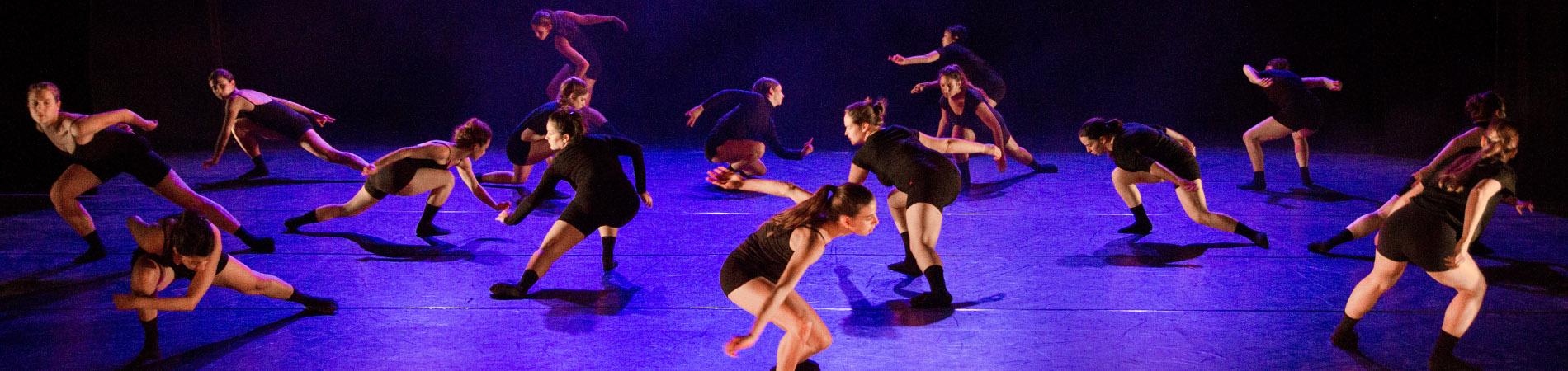 دراسة للقب الثاني بالرقص المعاصر M.Dance