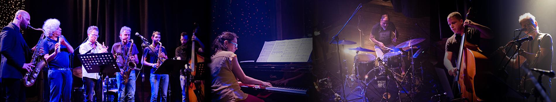 המסלול להתמחות בביצוע ג'אז
